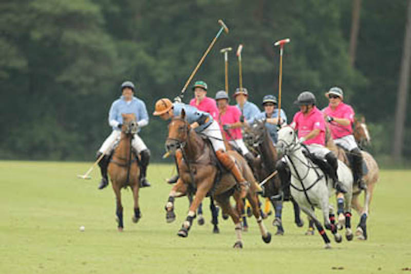 Polo Gut Appel 28.6.-30.6.2013-5