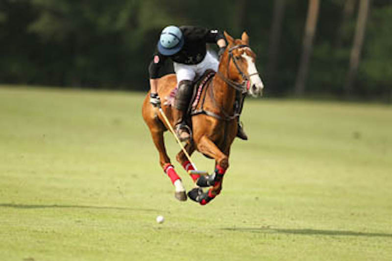 Polo Gut Appel 28.6.-30.6.2013-10